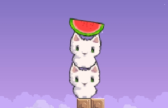Cat Cat Watermelon